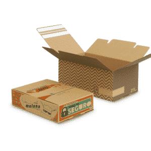 cajas_de_carton_personalizadas_capsa_2in1